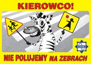 ZEBRA-SZKOLNA